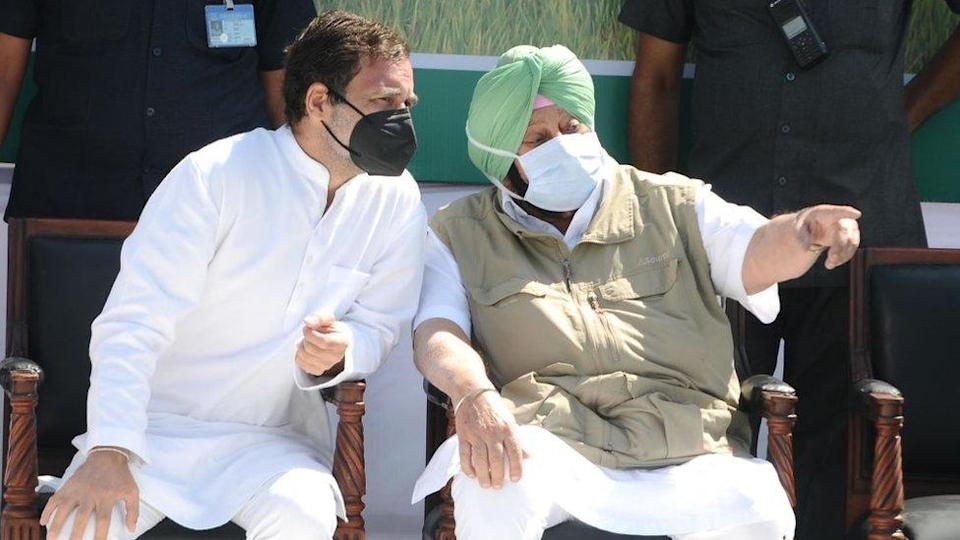 Congress leader Rahul Gandhi interacts with Punjab Chief Minister Captain Amarinder Singh during 'Kheti Bachao Yatra', in protest against the new farm bills, on October 5, 2020 In Sangrur, India.