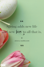<p>Spring adds new life and new joy to all that is. </p>