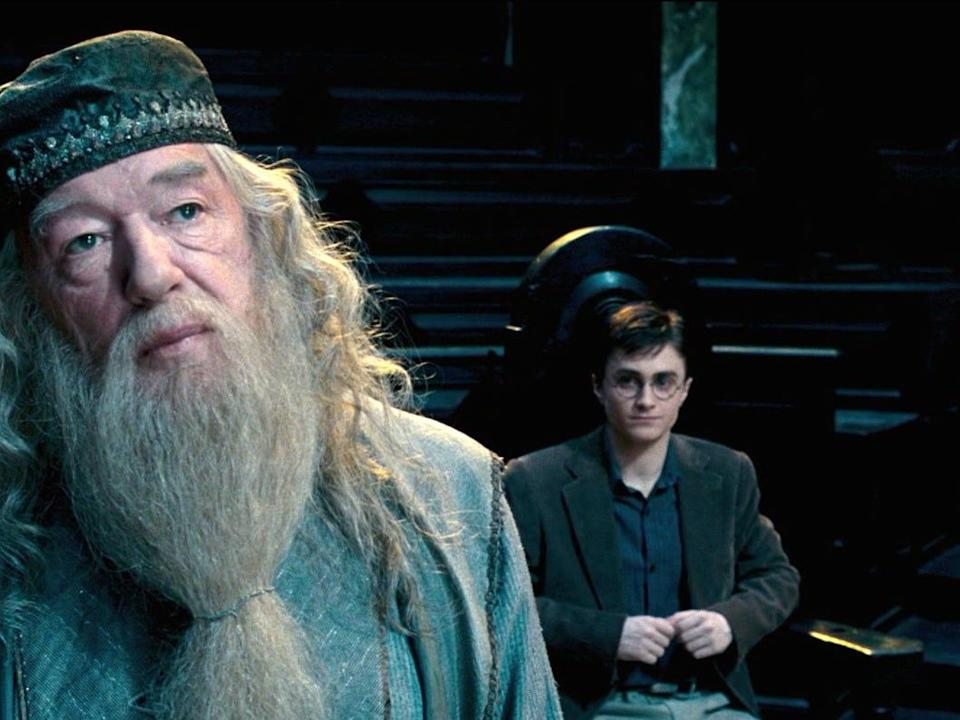 Dumbledore Harry Order of the Phoenix Harry Potter ministry