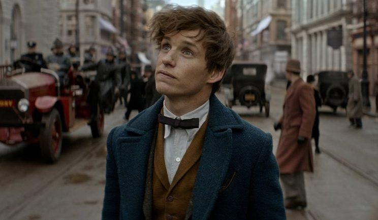 Newt's past may reappear in Fantastic Beasts 2 - Credit: Warner Bros.