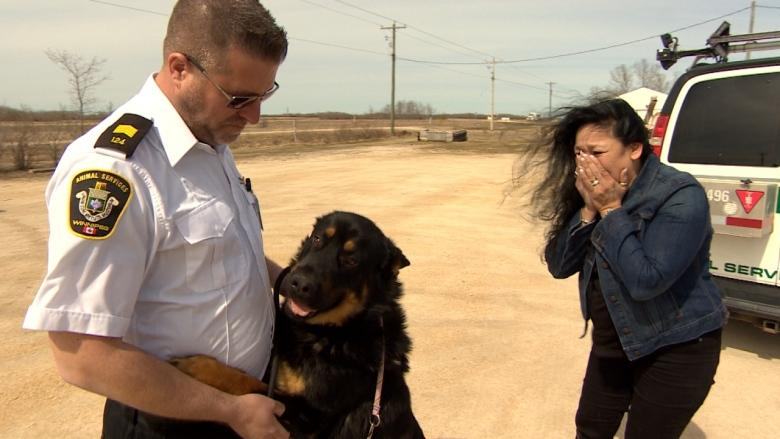 'My Mavi, you're home!' Dog returned to original family after $1K donation