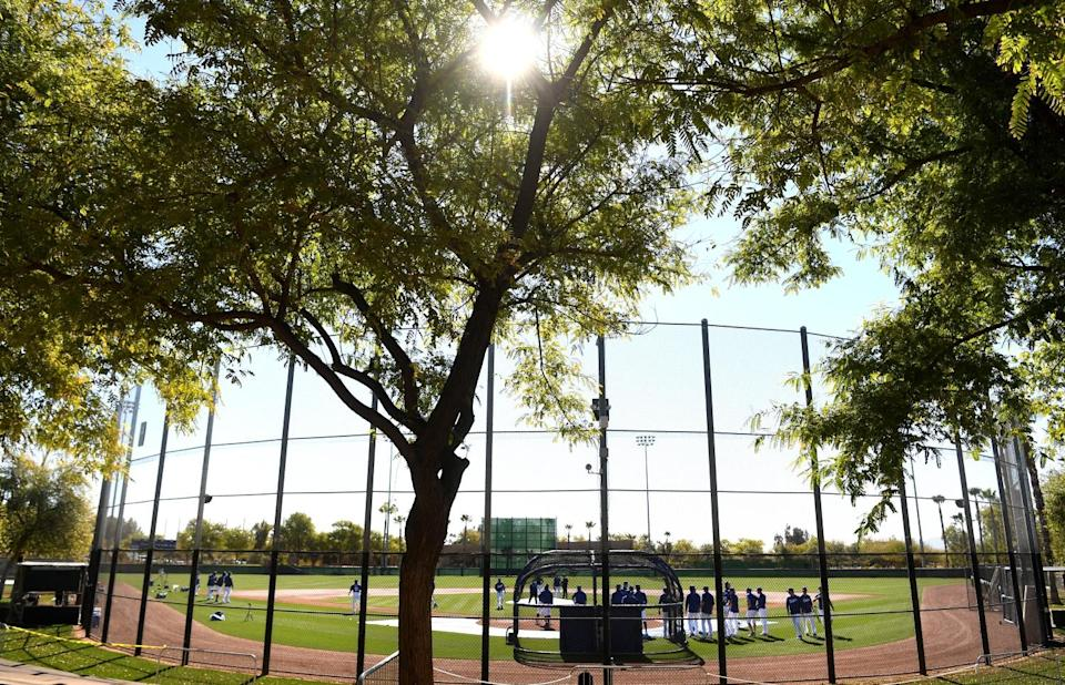Dodgers warm up before a spring training game