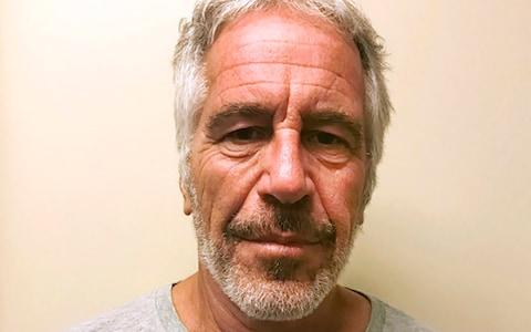 <span>Epstein took his own life in prison</span> <span>Credit: New York State Sex Offender Register </span>