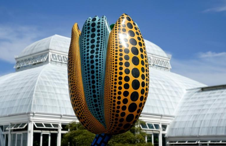 """""""Hymn of Life: Tulips"""" by Japanese artist Yayoi Kusama is on display at the New York Botanical Garden as part of an exhibit stretching across the 250-acre grounds"""