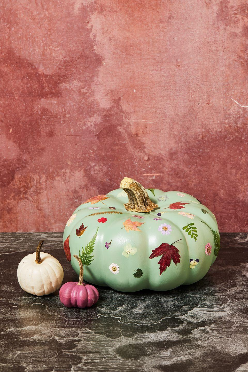 <p>Give your decor the loveliest upgrade with this design. To make, paint a small area of Modge Podge on the pumpkin surface, large enough to fit your flower or leaf. Using tweezers, carefully place the flower onto the Modge Podge. Then, use the brush with a little Modge Podge to smooth out the petals of the flower/leaf. Let it dry completely and repeat all over the surface of the pumpkin. Once dry, paint another layer or two of Modge Podge on top of the flowers and leaves to seal. Let dry for several hours to fully cure.</p>