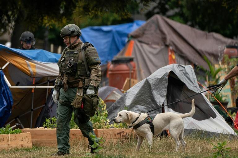 An FBI bomb technician walks with a dog from the Seattle Police Department bomb squad while clearing campers from Cal Anderson park, as police and city crews dismantle the Capitol Hill Organized Protest (CHOP) area on July 1, 2020