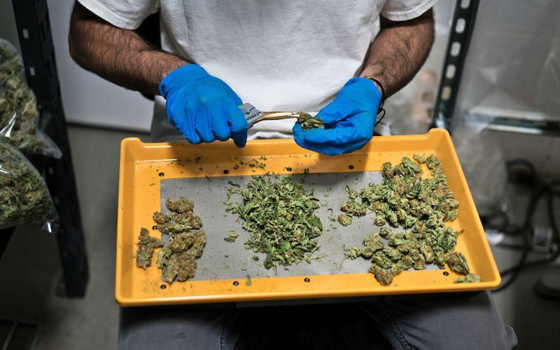 <p>No official decisions have been made as the territory is conducting a public survey on pot regulations. Consulations have taken place during the summer of 2017. Photo from Getty Images. </p>