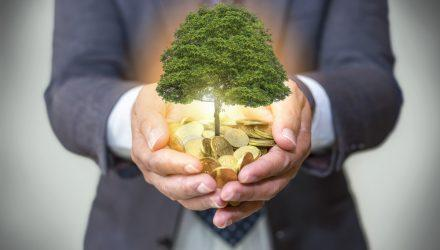WCG Impact Series: Sustainability doesn't mean Green