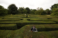 Gardener Gemma Hearn looks up as she poses for photographs whilst making a final trim of the Hampton Court Maze before it reopens to the public, at Hampton Court Palace, in south west London, Friday, July 30, 2021. The maze, which was first planted in 1689 and is the oldest hedge maze in Britain, reopens to visitors on Saturday after being closed since the beginning of the UK's coronavirus outbreak in March 2020. Three gardeners have worked on trimming it for two weeks ahead of the reopening. (AP Photo/Matt Dunham)