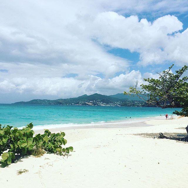 """<p>Discover a quieter, slower, and more mindful pace at the all inclusive <a href=""""https://www.spiceislandbeachresort.com/"""" target=""""_blank"""">Spice Island Beach Resort</a> in Grenada. The family-owned property features local food on its ever-changing menu and keeps track of dietary restrictions for all guests! There's no shortage of outdoor activities — hiking, tennis, snorkeling — and there's an on-site spa that uses local herbs and spices native to the island. One more highlight: the afternoon tea featuring therapeutic varieties.</p><p><a class=""""body-btn-link"""" href=""""https://go.redirectingat.com?id=74968X1596630&url=https%3A%2F%2Fwww.tripadvisor.com%2FHotel_Review-g1182535-d148386-Reviews-Spice_Island_Beach_Resort-Grand_Anse_South_Coast_Saint_George_Parish_Grenada.html&sref=http%3A%2F%2Fwww.goodhousekeeping.com%2Flife%2Ftravel%2Fg28579114%2Fbest-wellness-hotels%2F"""" target=""""_blank"""">BOOK NOW</a></p><p><a href=""""https://www.instagram.com/p/Bup2WSJngX8/"""">See the original post on Instagram</a></p>"""