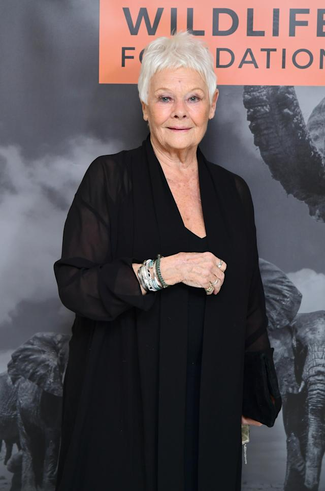 Dame Judi Dench was the target of a crass joke. (Photo by Ian West/PA Images via Getty Images)
