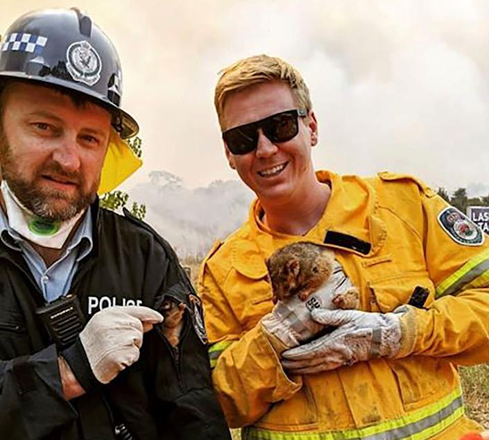 New South Wales Rural Fire Service firefighter and police officer hold a possum and her baby after they rescued them from under a car during the bushfires on New Year's Eve. (Photo: ASSOCIATED PRESS)