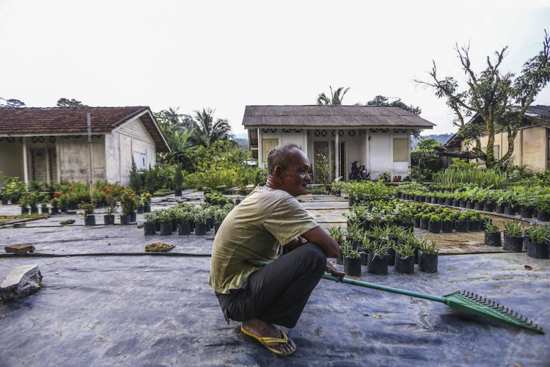 Leprosy patients who still live in some of the houses conduct their own activities, such as planting seedlings and selling the resulting crops, to supplement their daily expenses. — Picture by Hari Anggara