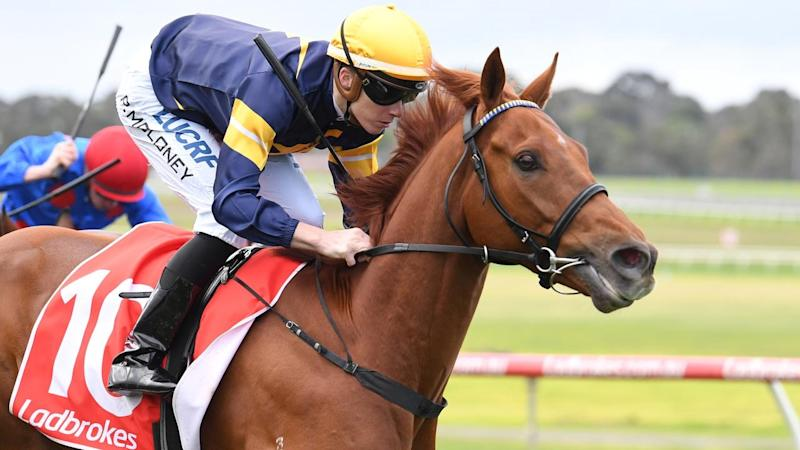Sandown Preview