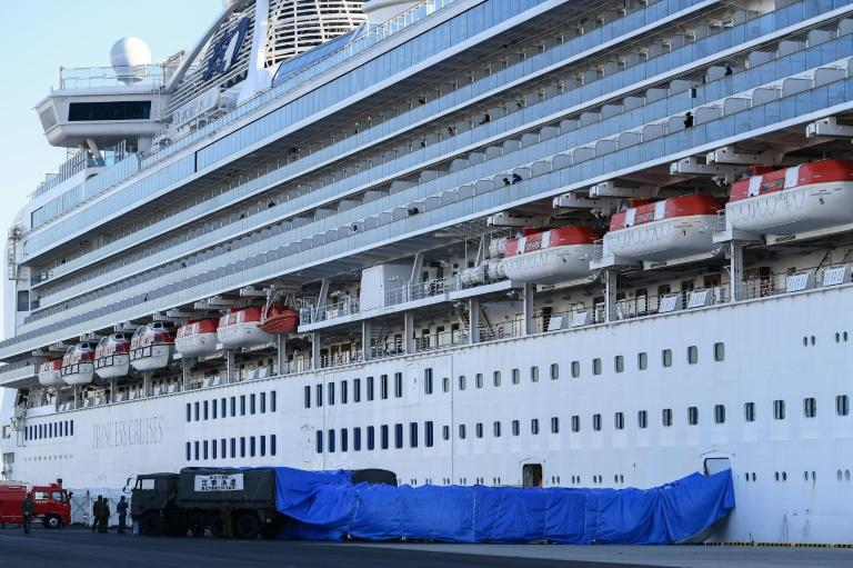 Japanese military personnel set up a covered walkway next to the quarantined Diamond Princess cruise ship in Yokohama port