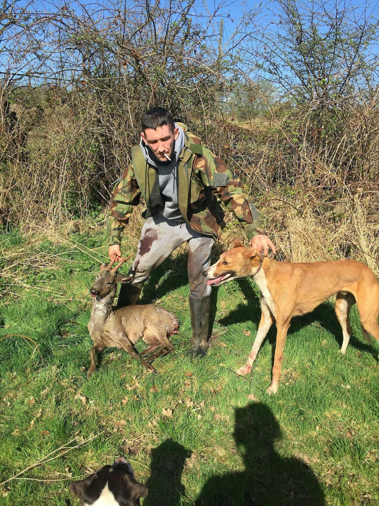 Cruel owner who trained his dogs to hunt deer and foxes for