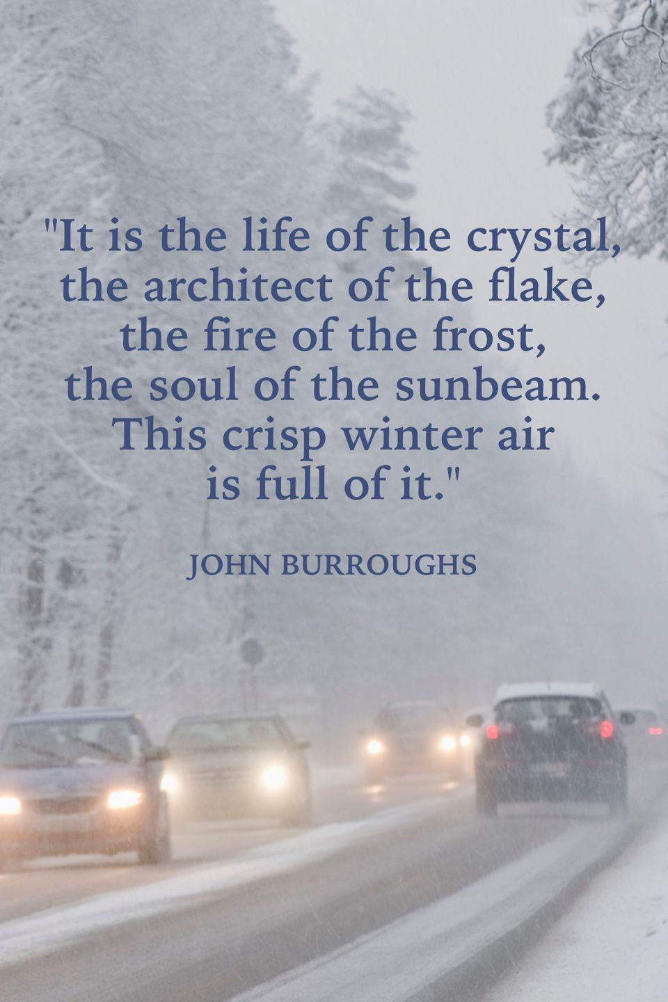 "<p>""It is the life of the crystal, the architect of the flake, the fire of the frost, the soul of the sunbeam. This crisp winter air is full of it.""</p>"
