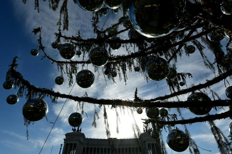 Rome's Christmas tree, pitifully weedy in comparison with the majestic trees at the Vatican and rival cities like Milan, soon built up a following of devoted supporters