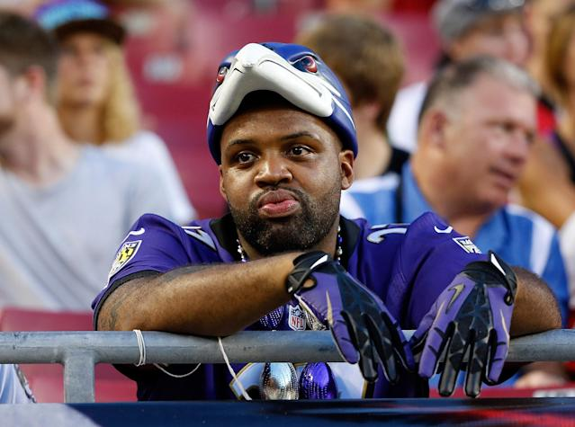 TAMPA, FL - AUGUST 08: A Baltimore Ravens fans watches his team against the Tampa Bay Buccaneers during a preseason game at Raymond James Stadium on August 8, 2013 in Tampa, Florida. (Photo by J. Meric/Getty Images)