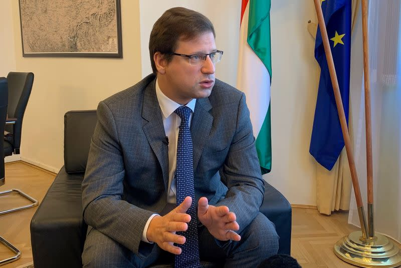 FILE PHOTO: Gergely Gulyas, Hungarian Prime Minister Viktor Orban's chief of staff speaks during an interview in his office in Budapest