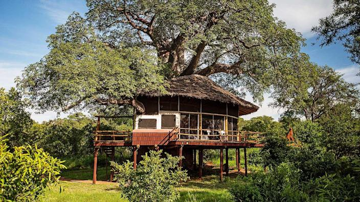 Aim high and stay at this luxury treehouse property in Tanzania. What makes this treehouse different from many others is that there are 20 rooms perched around marula and baobab trees (some of which are 700 years old), bringing nature into the core of the space. Additionally, there's a swimming pool, dining room, and lounge, all with incredible views of the wildlife below. It's safe to say there are no accommodations quite like this anywhere else.