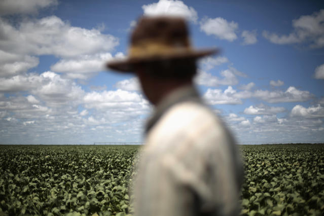 Soybean farmers will receive the biggest share of agricultural aid. AGRICULTURE/CATERPILLAR REUTERS/Ueslei Marcelino