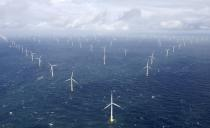 FILE PHOTO: Power-generating windmill turbines are pictured at the 'Amrumbank West' offshore windpark in the northern sea near the island of Amrum
