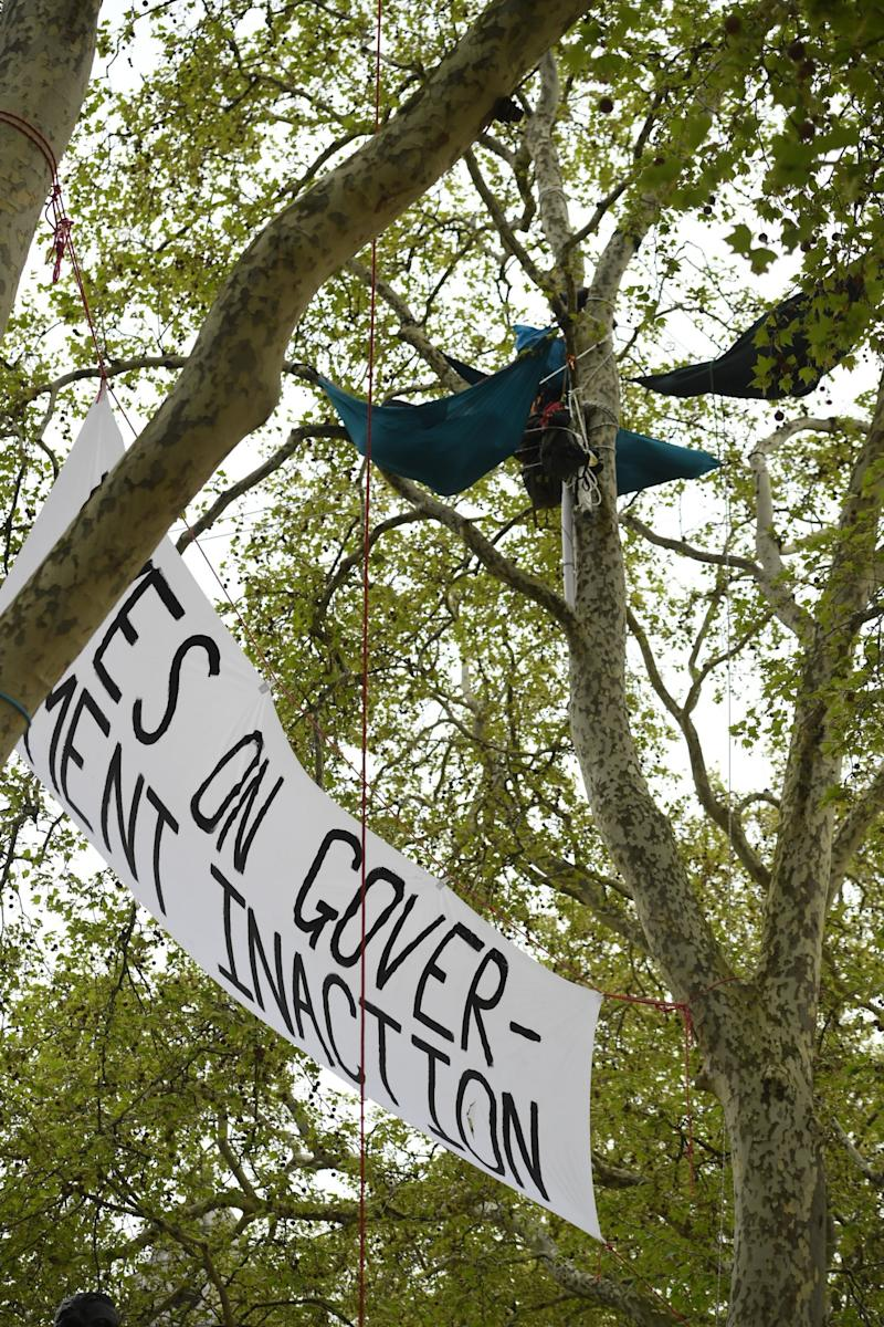 Extinction Rebellion hanging from trees in Parliament Square on Tuesday. (Jeremy Selwyn)