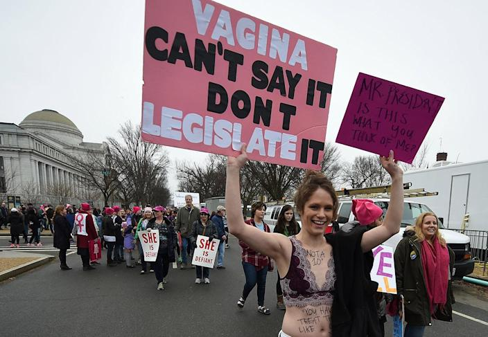 <p>Demonstrators protest on the National Mall in Washington, DC, for the Women's March on January 21, 2017. (ROBYN BECK/AFP/Getty Images) </p>