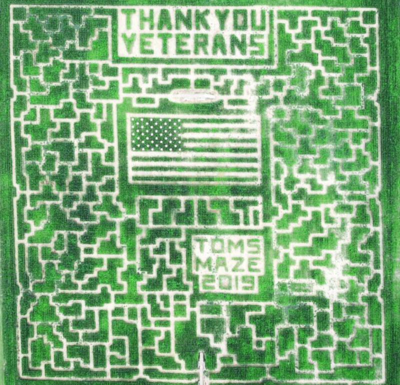 corn maze with words thank you veterans and american flag