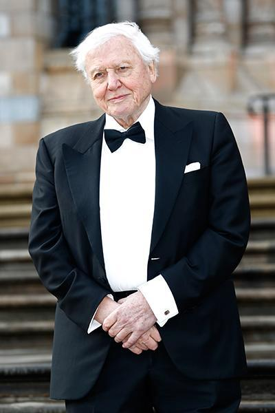 Find out what David Attenborough's net worth is and how he