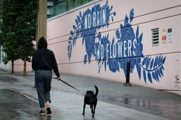A person walks their dog in rainy Vancouver, B.C., on Friday, Sept.17, 2021.  (Maggie MacPherson/CBC - image credit)