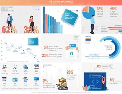 The State of SMEs in MENA Infographic