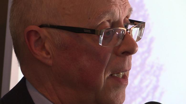 Happy Valley-Goose Bay mayor calls for Labrador-only health authority