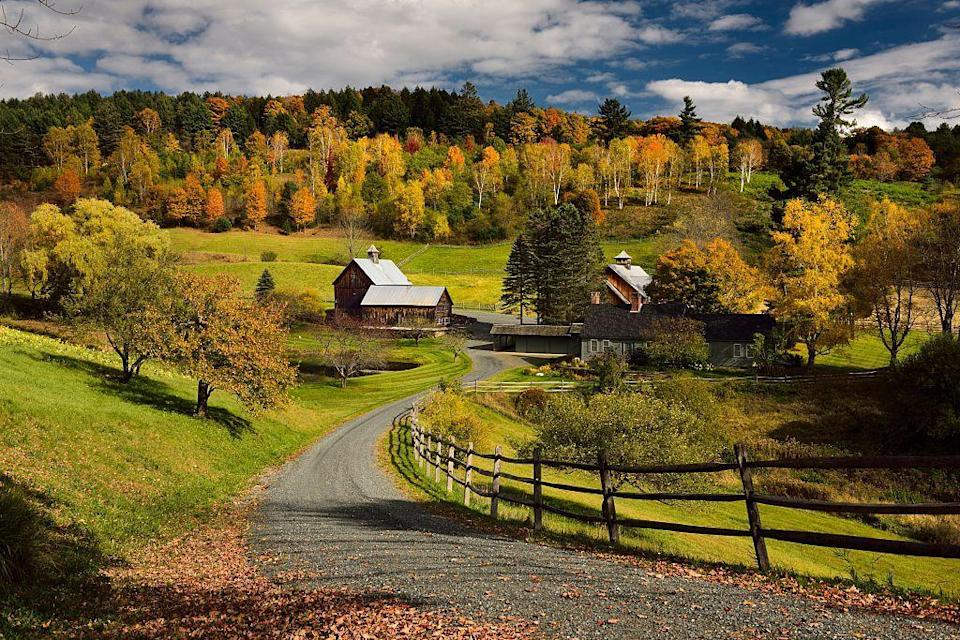 <p>This beautiful destination for fall foliage remains popular for more than just its leaves. Scenic walks, covered bridges and a trip to New England Falconry (where you can hold real falcons and learn about the sport) are musts!</p>