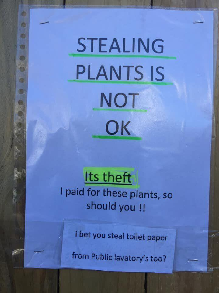 """One of the Sydney woman's signs in Bondi read: """"Stealing plants is not ok. It's theft. I paid for these plants, so you should. I bet you steal toilet paper from public lavatories too."""" Source: Facebook"""