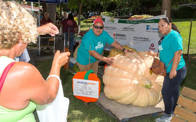 Fairgoers pose with the 2nd largest pumpkin (698 pounds!) in the Iowa State Fair Big Pumpkin Contest. The winning pumpkin came in at a modest 760 pounds. | Jason Bergman