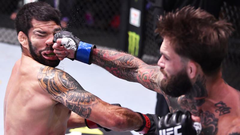 Cody Garbrandt is pictured landing a knockout blow on Raphael Assuncao.