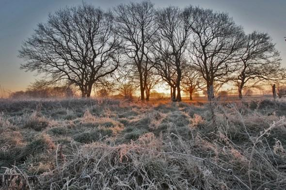 Get the heating on! Icy frost and temps of -3C this weekend