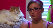 <p>I cannot emphasize enough how much time this cat just sat there glaring at everyone during this episode. </p>