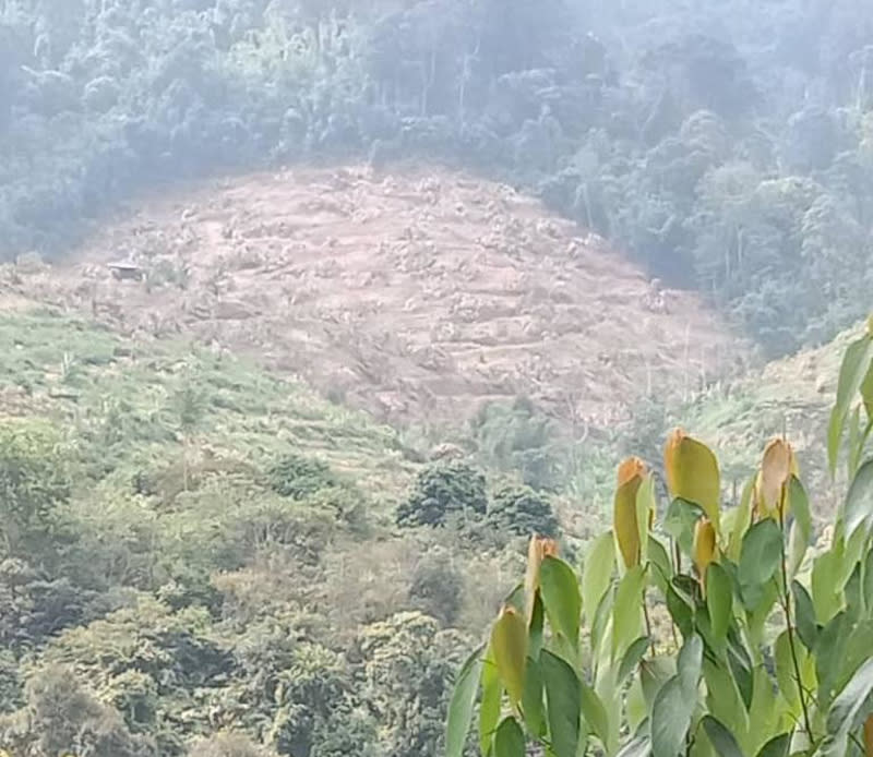 Chang expressed disappointment towards JPNP's actions, claiming the nine-day operation had managed to destroy trees planted and nurtured by these farmers for more than 20 years across the affected 250-acres of land. — Picture courtesy of Samka