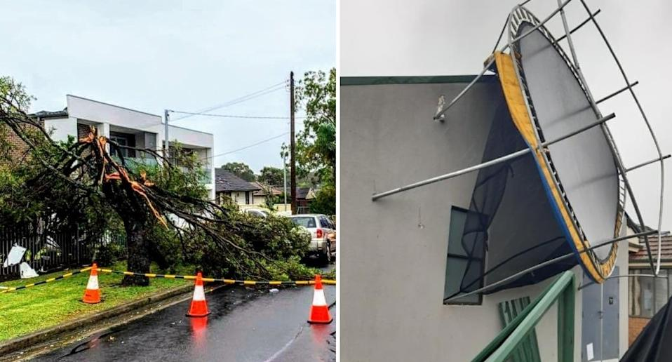 Fallen trees and a trampoline lodged in a house in Chester Hill are pictured.