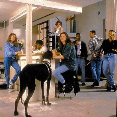"The cast of ""The Real World"" pictured in their loft in 1992"