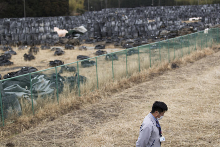 """Yuya Hatakeyama, a Tomioka town official, walks by a temporary storage location for bags of dirt with possible radioactive waste during an interview with The Associated Press as he guides reporters in a """"difficult-to-return"""" zone in Tomioka town, Fukushima prefecture, northeastern Japan, Friday, Feb. 26, 2021. Hatakeyama, forced to evacuate as a 14-year-old junior high school student, is back in town as a rookie official. Now at age 24, Hatakeyama wants to help rebuild the community and reconnect residents for the struggling town. (AP Photo/Hiro Komae)"""