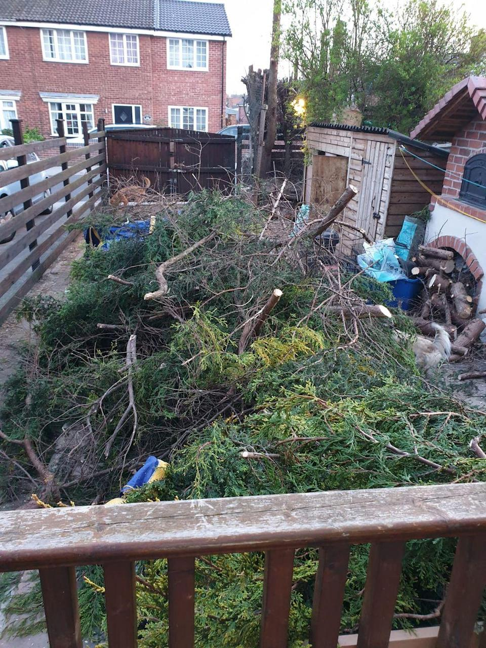 <p>Disaster struck when Karen Howden tried to clear some trees, meaning she now has a mammoth clearing task on her hands to get the space set for summer. </p>