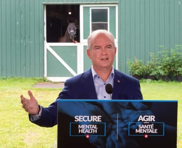 Conservative Leader Erin O'Toole makes an announcement about mental health support in Brantford, Ont., on Wednesday. (Ryan Remiorz/The Canadian Press - image credit)