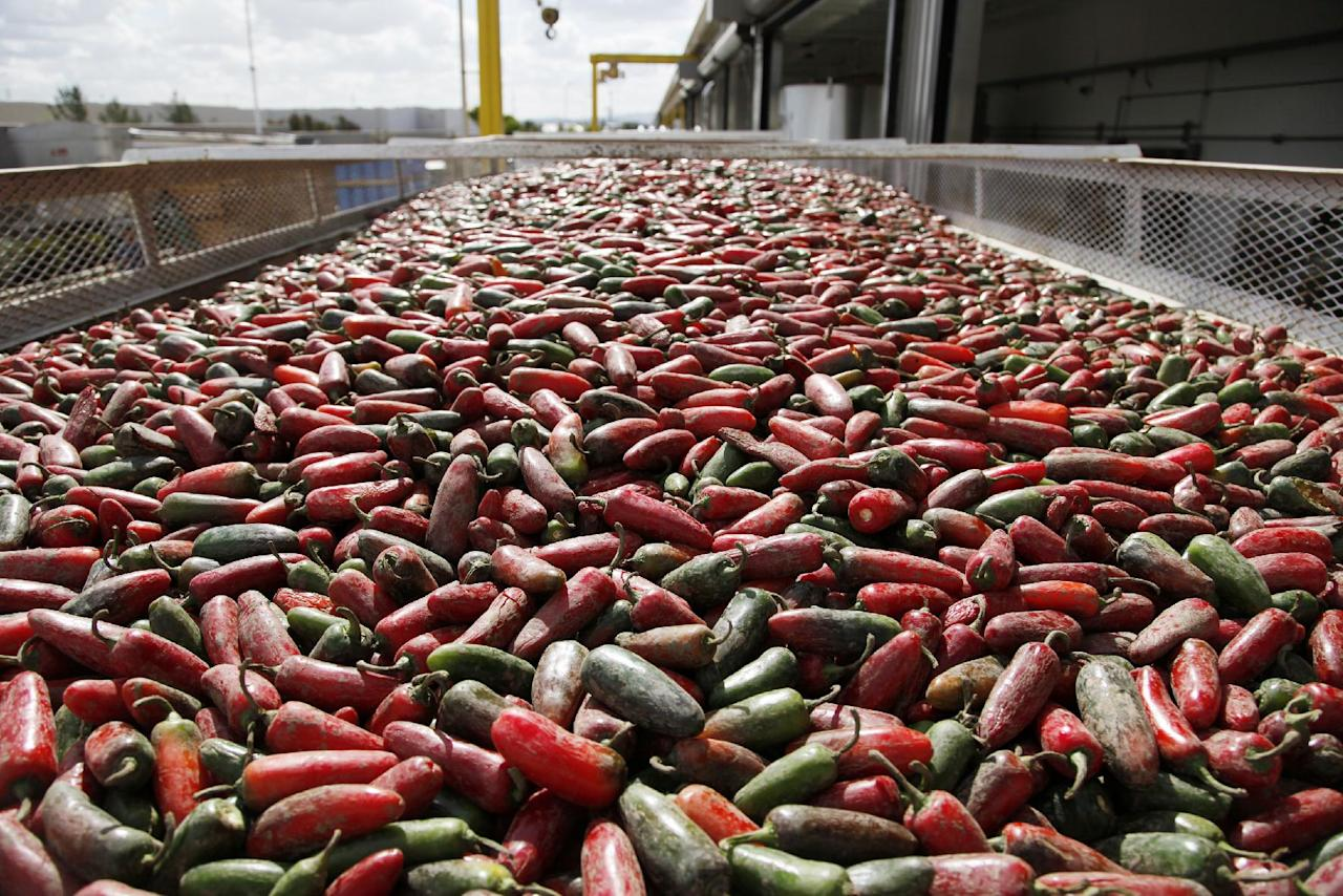 In this Tuesday Oct. 29, 2013 photo, chili peppers are loaded onto a conveyer belt for making of Sriracha chili sauce at the Huy Fong Foods factory in Irwindale, Calif. The maker of Sriracha hot sauce is under fire for allegedly fouling the air around its Southern California production site. The city of Irwindale filed a lawsuit in Los Angeles Superior Court on Monday Oct. 28, 2013 asking a judge to stop production at the Huy Fong Foods factory, claiming the chili odor emanating from the facility is a public nuisance. (AP Photo/Nick Ut)