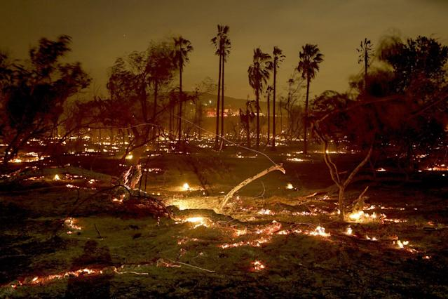 Smoldering Peters Canyon Regional Park in Orange, Calif. (Photo: Irfan Khan / Los Angeles Times via Getty Images)