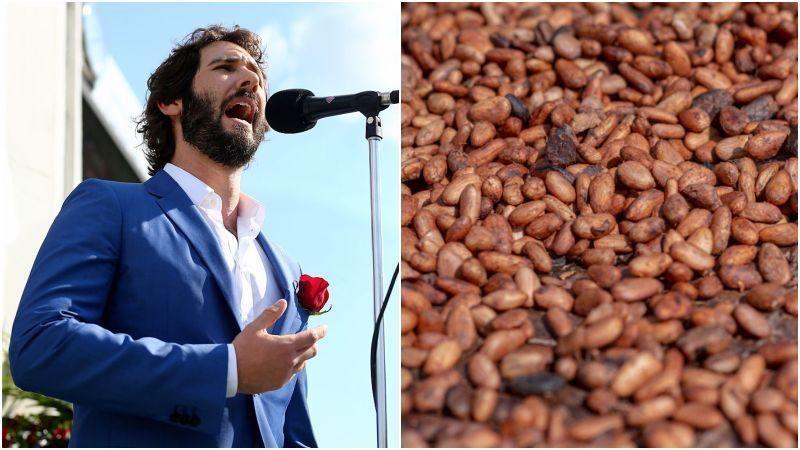 Picture of Josh Groban next to photo of beans
