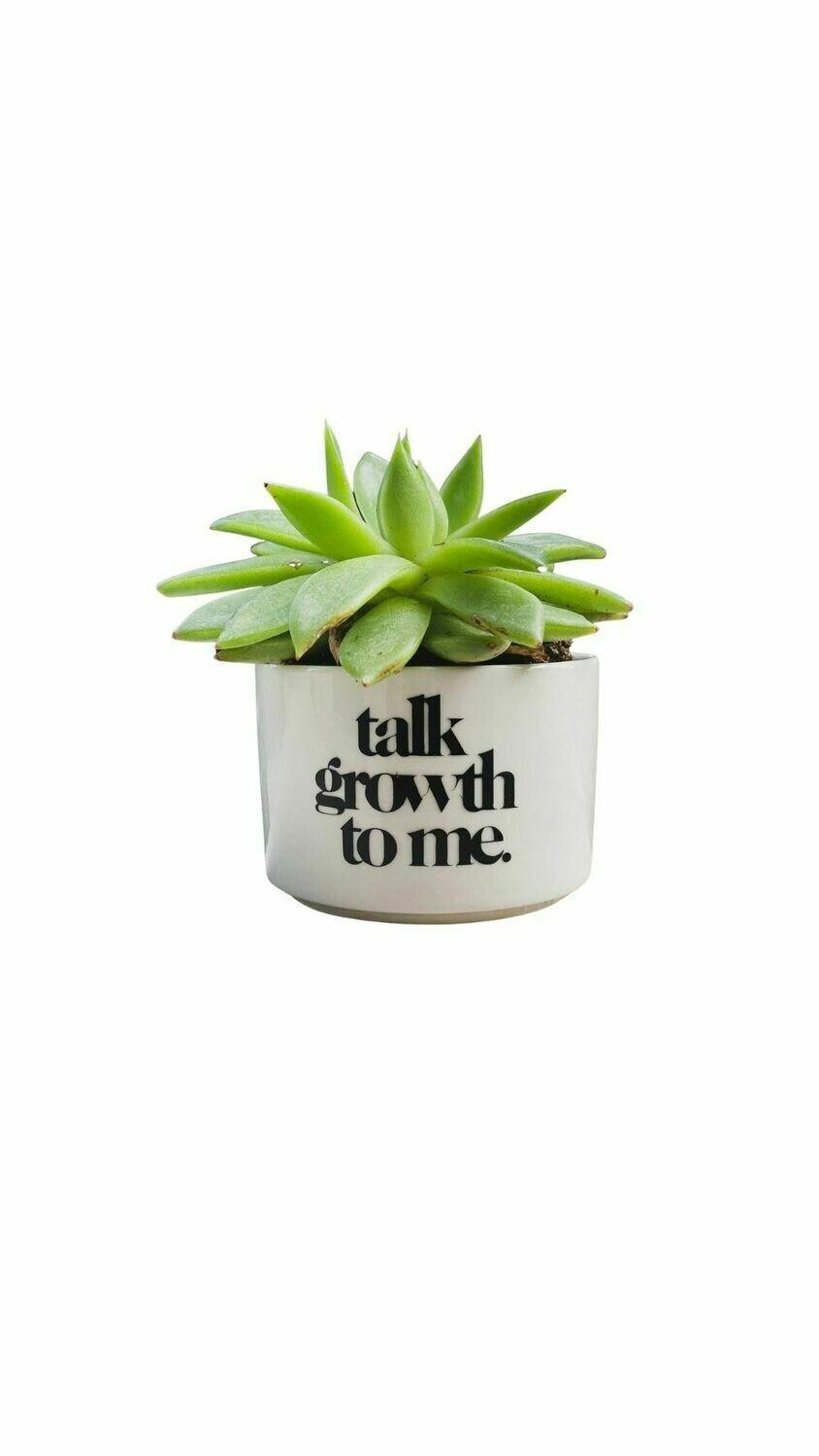"""<p><strong>Plant Economy</strong></p><p>planteconomy.company.site</p><p><strong>$15.00</strong></p><p><a href=""""https://planteconomy.company.site/Baby-Pot-Various-Styles-2-5%E2%80%9D-p276589481"""" rel=""""nofollow noopener"""" target=""""_blank"""" data-ylk=""""slk:Shop Now"""" class=""""link rapid-noclick-resp"""">Shop Now</a></p><p>Motivate them to bring some life into their space with this cute planter. It's made out of ceramic and features three different fun phrases to choose from. Our favorite one? """"Plant shawty!""""</p>"""